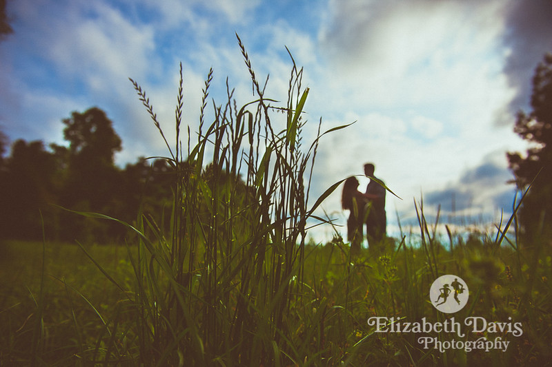 woodland forest session in Tallahassee by Elizabeth Davis Photography