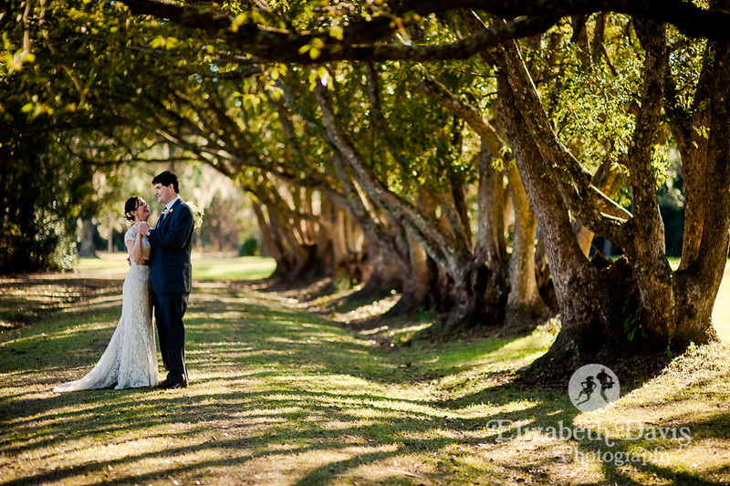 bride and groom first look in tree-lined lane | Southern outdoor wedding | Elizabeth Davis Photography