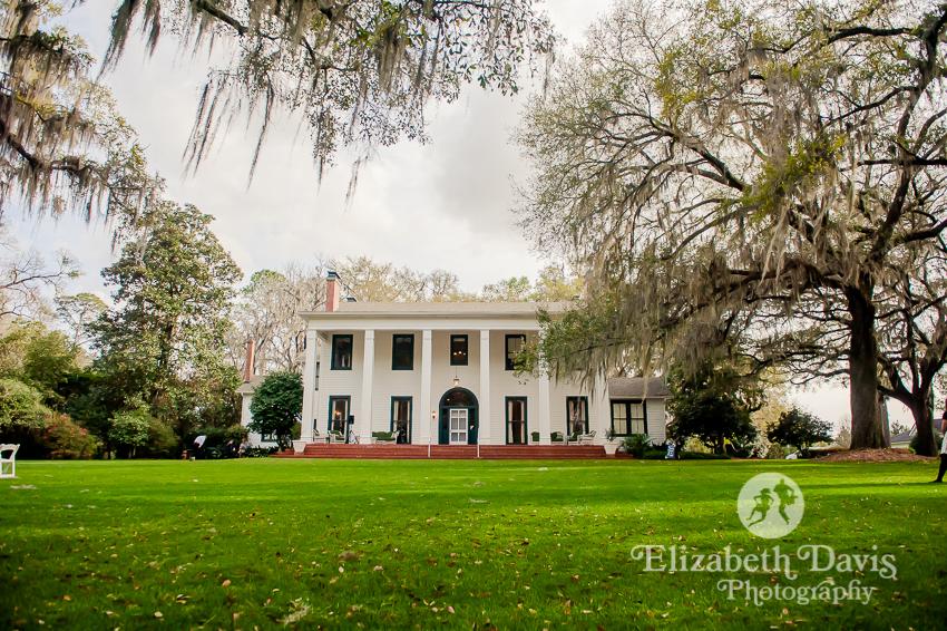 front lawn outdoor ceremony   Southwood House wedding   Elizabeth Davis Photography